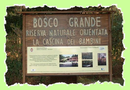 cascina bosco grande pavia
